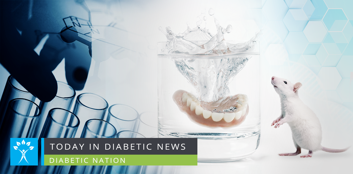 diabetic mice and teeth health