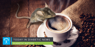 Substance in coffee delays onset of diabetes in laboratory mice