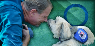 man touching noses with diabetic alert dog over green background