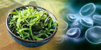 seaweed study, diabetes, top diabetes news